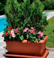Athina-jardinieres